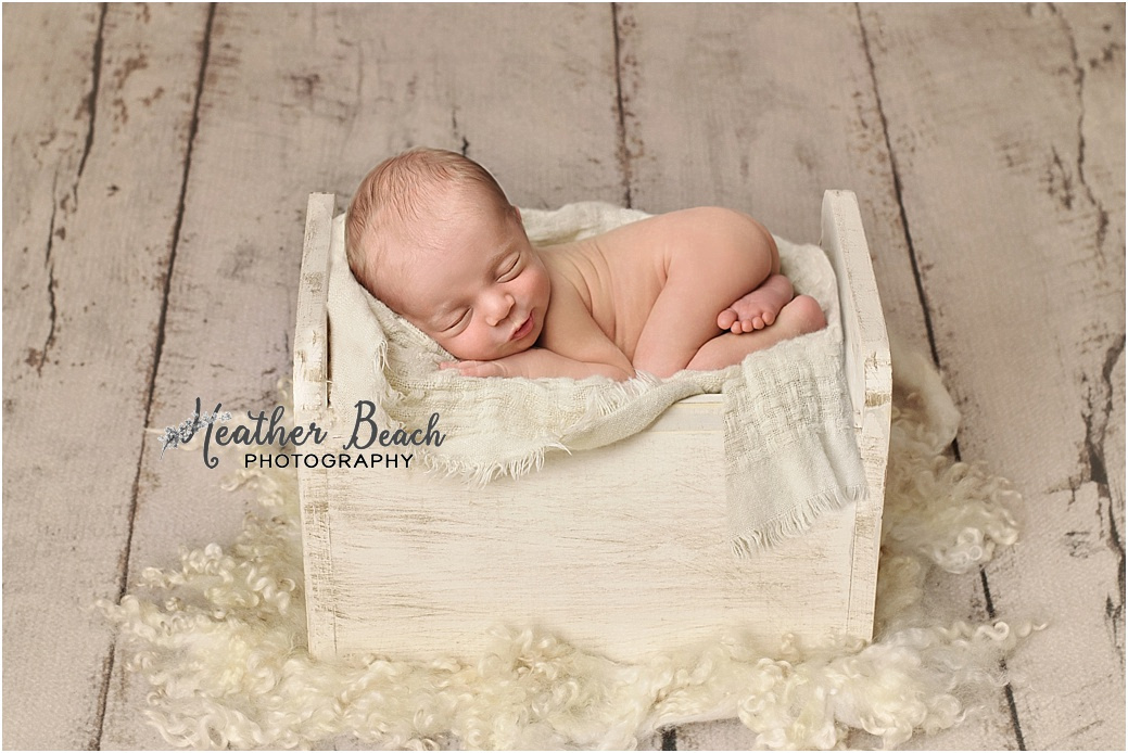 siblings, brothers, family with newborn, Sun Prairie newborn photographer, Sun Prairie portrait photographer,  newborn boy, studio photography