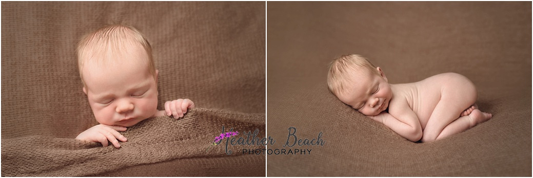 Sun Prairie newborn photographer, studio photography, Sun Prairie baby photographer, posed newborn images
